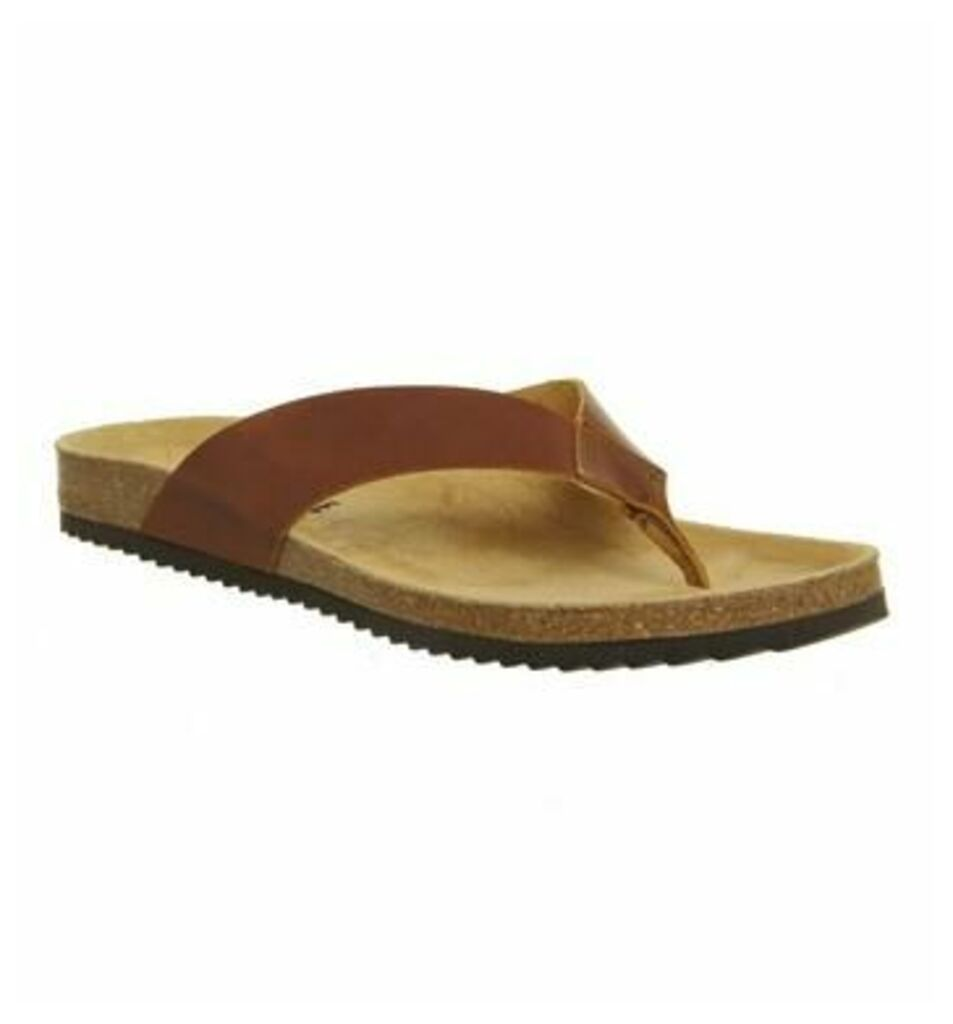 Office Darwin Thong Sandal BROWN LEATHER
