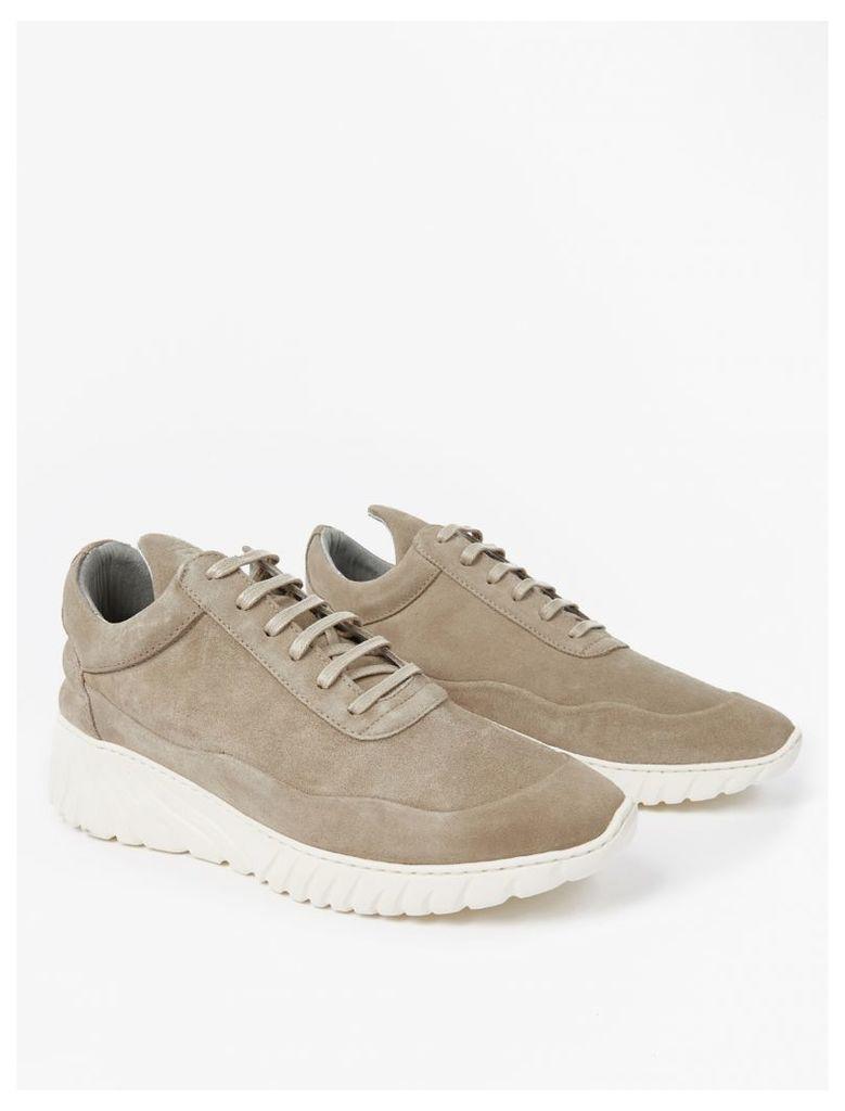 Grey Suede Roots Sneakers