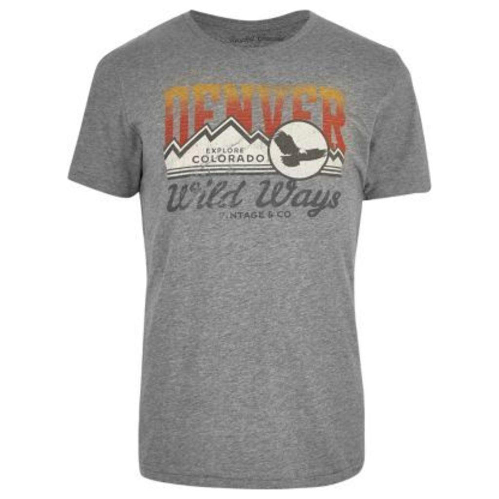 River Island Mens Grey Denver print washed T-shirt