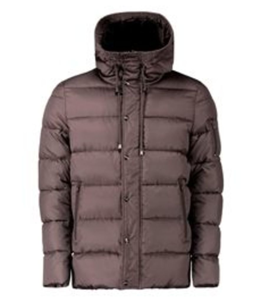 Men's Brown Classic Puffa Jacket - With Hood