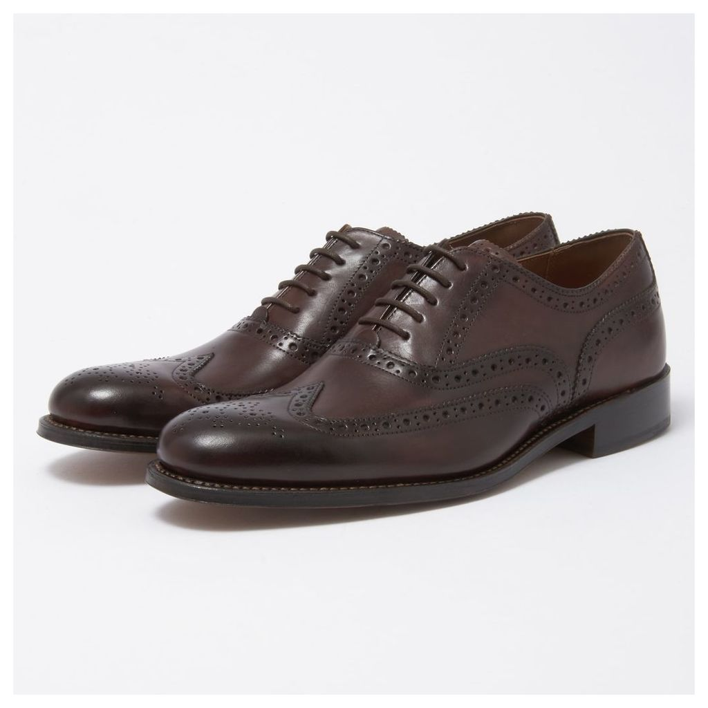 Dylan Brogue Shoes - Dark Brown