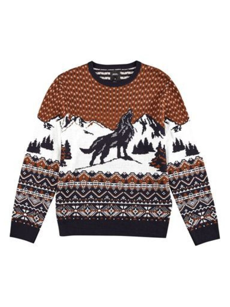 Mens Brown Wolf Design Christmas Jumper, BROWN