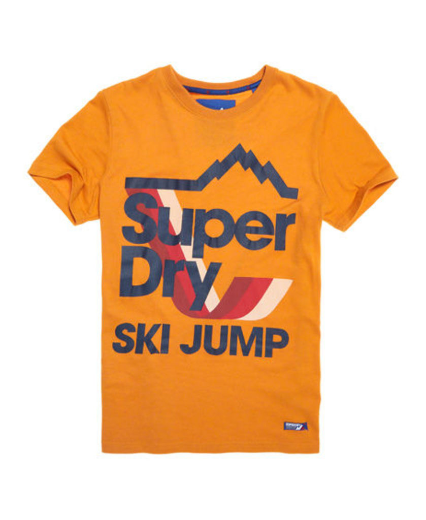 Superdry Retro Mountaineer T-shirt